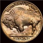 Buffalo Nickel on Black