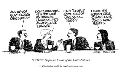 Appellate Lawyer