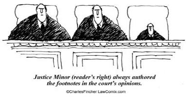 Appellate Footnote Author