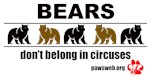 Bears Don't Belong in Circuses