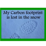 My Carbon Footprint Is Lost in the Snow
