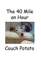 The 40 Mile an Hour Couch Potato