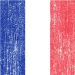 Vintage France Flag