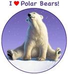 I Love Polar Bears!