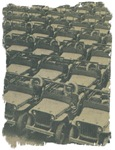 Field of Willys and Ford jeeps