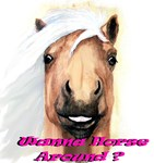 New SectioWanna Horse Around