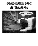 Obedience Dogs