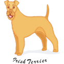 Irish Terrier T-shirt, Irish Terrier T-shirts
