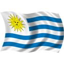 Wavy Uruguay Flag