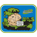 Missouri Largest Pecan
