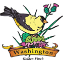 Washington Golden Finch