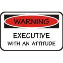 Executive T-shirt, Executive T-shirts