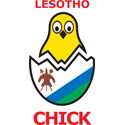 Lesotho Chick