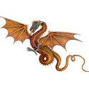 Dragon T-shirt, Dragon Gift, Dragon Gifts