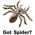 Spider T-shirt, Spider T-shirts, Spider Gifts