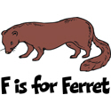 F is for Ferret