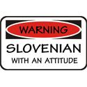 Attitude Slovenian