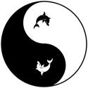 Yin Yang Dolphin