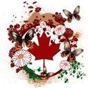 Psychedelic Canada