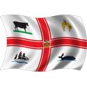 Wavy Melbourne Flag