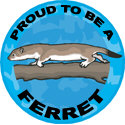 Proud To Be A Ferret