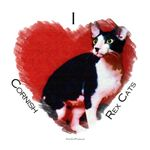 I (heart) Cornish Rex Cats