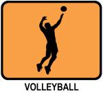 Mens Volleyball (orange)