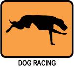 Dog Racing (orange)