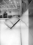 Around the Rink Photography