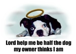 LORD HELP ME TO BE HALF THE DOG MY OWNER THINKS I