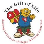 Gift of Life BEAR