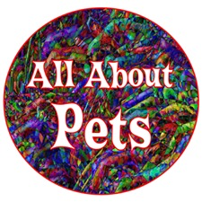 <b>ALL ABOUT PETS</b>