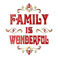 <b>FAMILY IS  WONDERFUL</b>