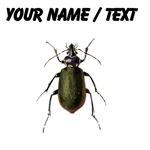 Custom Calosoma Scrutator Beetle