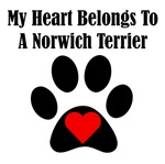 My Heart Belongs To A Norwich Terrier