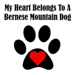 My Heart Belongs To A Bernese Mountain Dog
