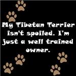 Well Trained Tibetan Terrier Owner