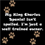 Well Trained King Charles Spaniel Owner