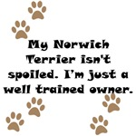 Well Trained Norwich Terrier Owner