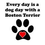 Boston Terrier Dog Day
