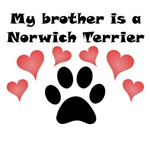 My Brother Is A Norwich Terrier
