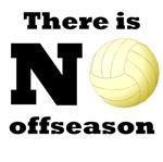 No Volleyball Offseason