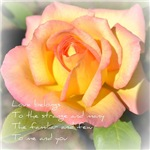 Peach Rose Love Belongs Poem