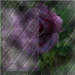 Rose Forever Poem Tile