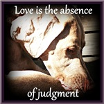 Absence of Judgement