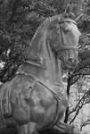 Equine Statue, Dallas