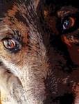 Eyes of Innocence, Photo / Digital Painting