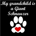 Giant Schnauzer Grandchild