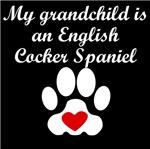 English Cocker Spaniel Grandchild