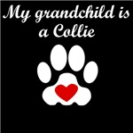 Collie Grandchild